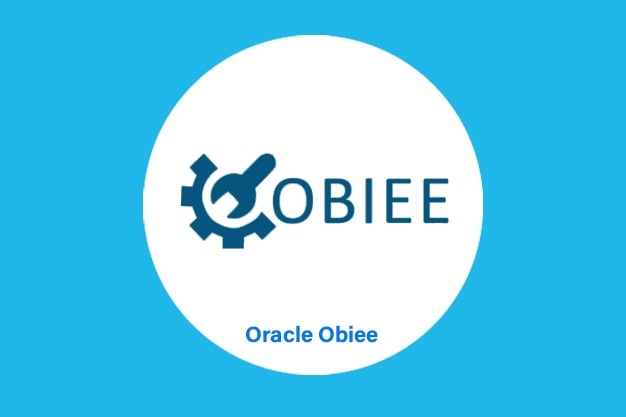 Oracle_Obiee_Online_Training-logo_Introduction.jpg